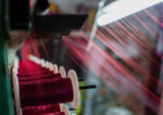 Clothes From a Petri Dish: $700M Company May Have Cracked the Code on Spider Silk