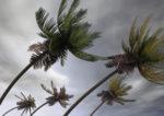 Hawaii's Ports Brace for Hurricane Lane