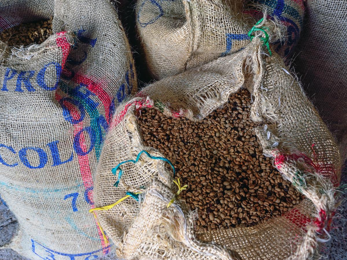 0102 coffeefarmersgaingrounds