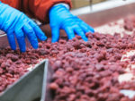 FDA May Call Back More Staff to Check 'Riskiest' Food Products
