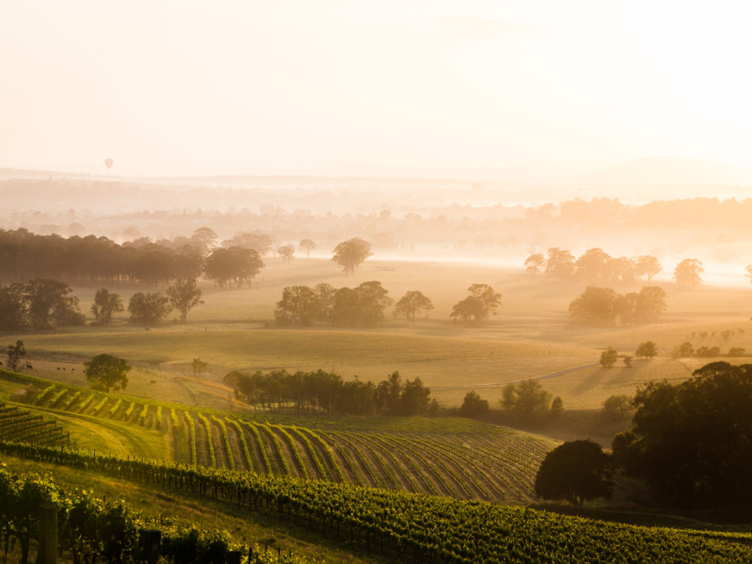 Trade Wars, Tech and Climate Change: Seven Ways Wine Will Evolve in 2019