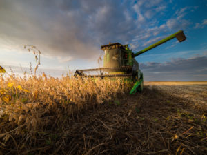 Forecast for U.S. Ag Exporters: Continued Pain