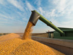 Container Shipping Can Help Diversify International Sales of U.S. Soybeans