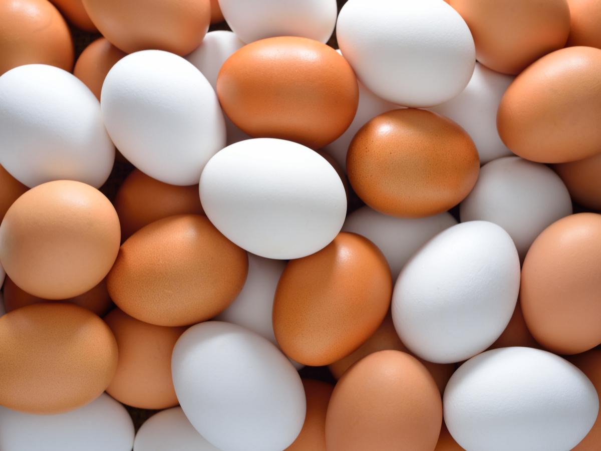 McDonald's Quest for Specialty Eggs Erodes Cage-Free Premium ...