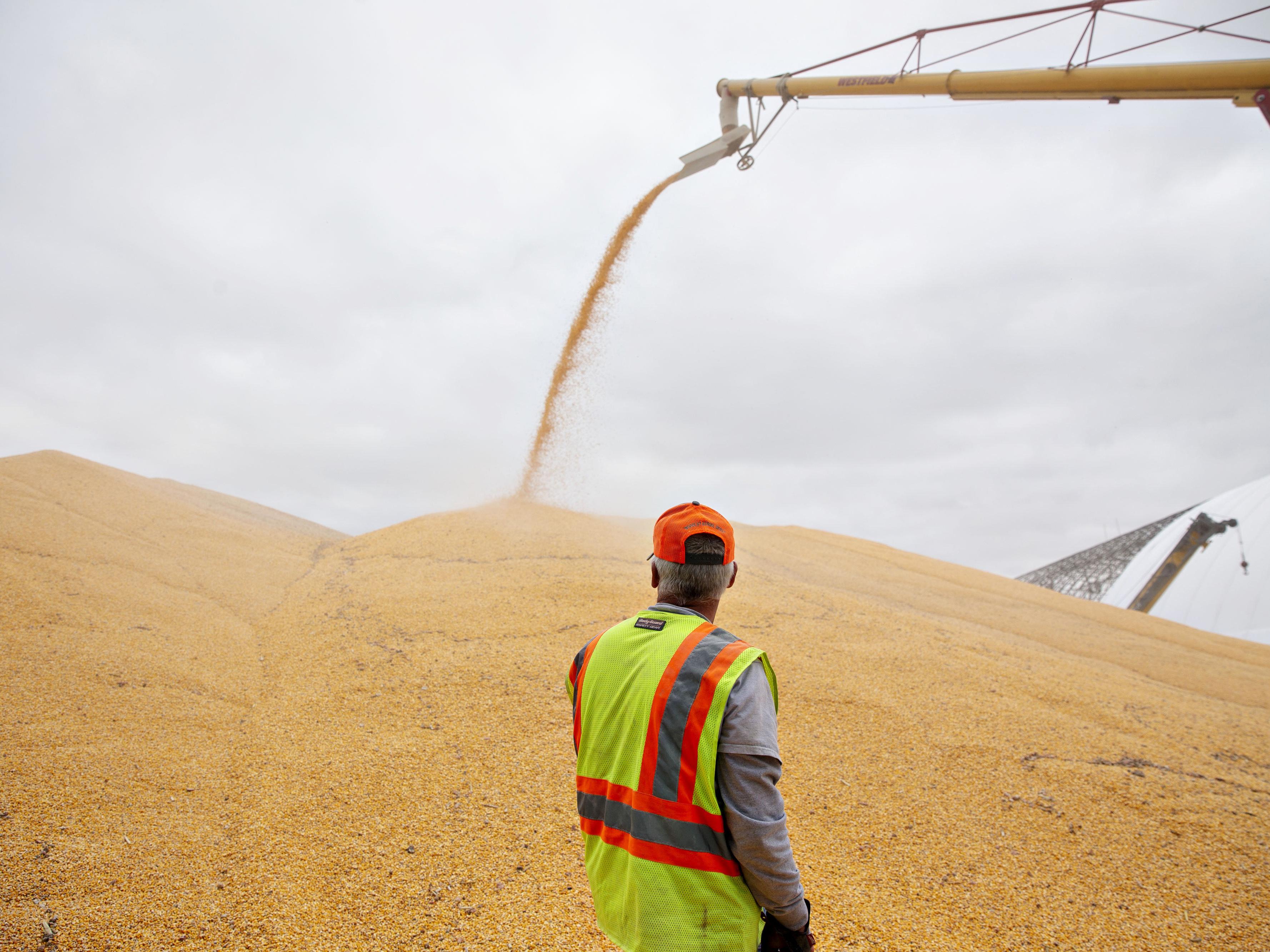 China Ties Agriculture Binge to Trump Reducing U.S. Tariffs