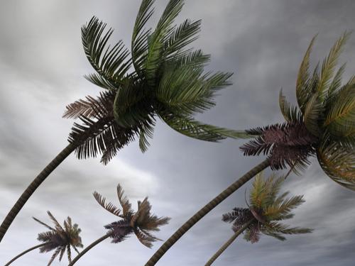 0826_tropicalstormdoriangains