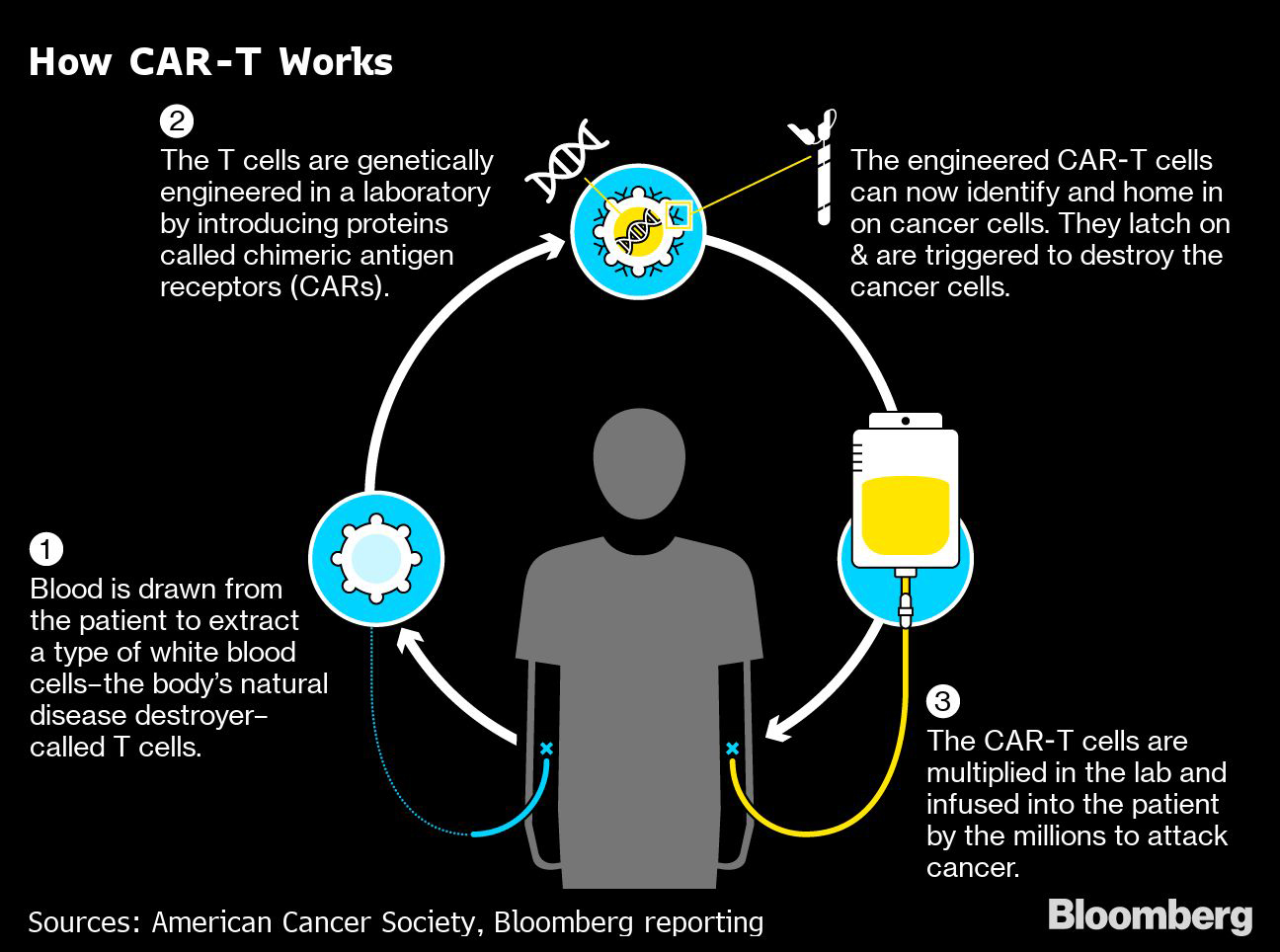 How CAR-T Works