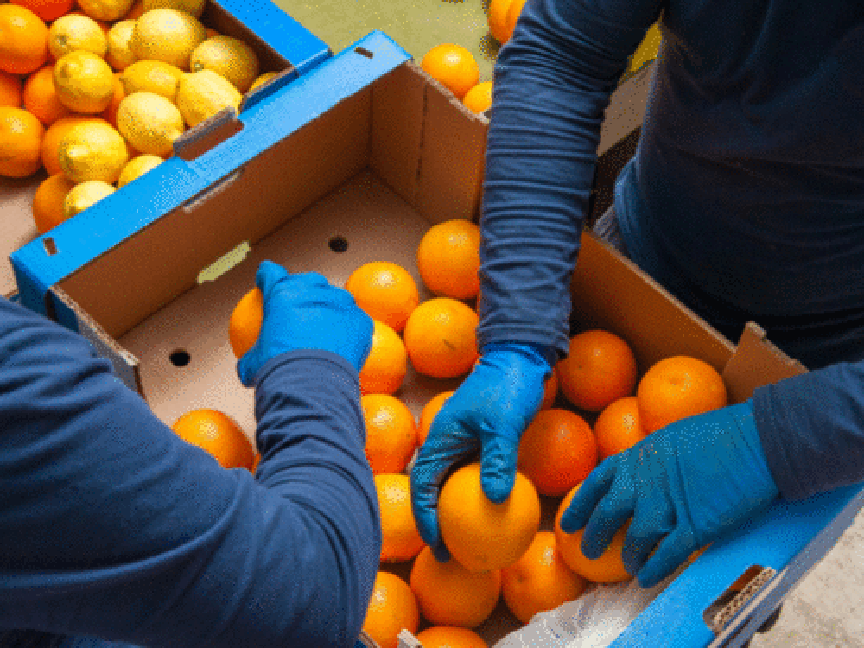Is There Progress in Supply-Chain Sustainability?