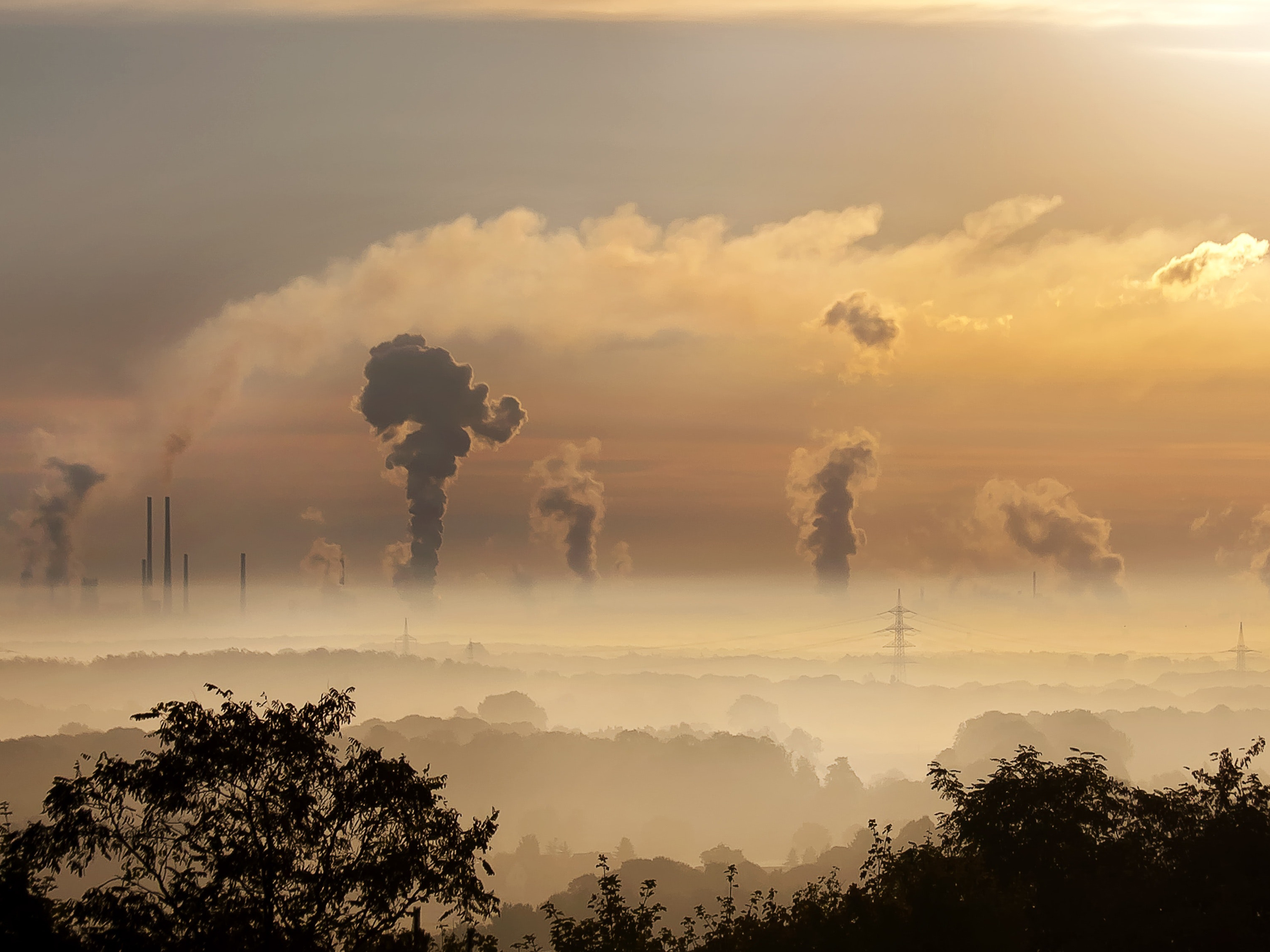 For Global Supply Chains, the Bar Has Been Raised on Emissions Reporting