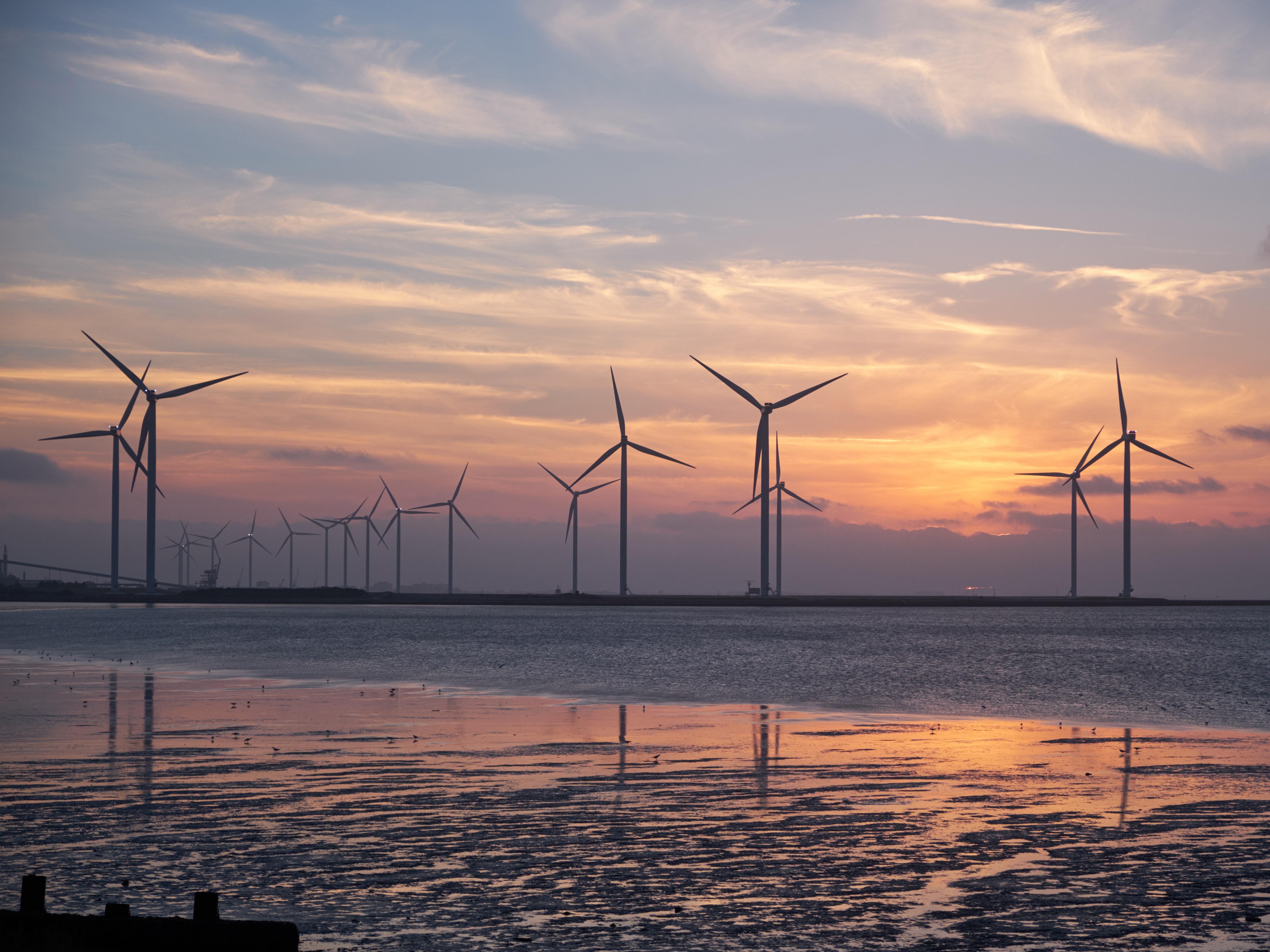 Ten Ways Renewable Energy's Boom Year Will Shape 2021