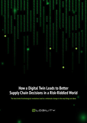 How a Digital Twin Leads to Better Supply Chain Decisions in a Risk-Riddled World