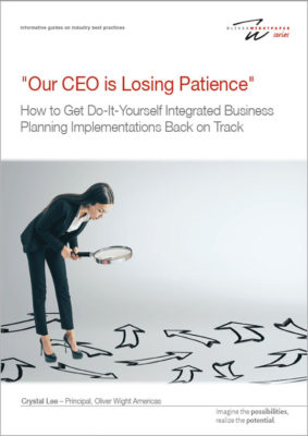 How to Get Do-It-Yourself Integrated Business Planning Implementations Back on Track