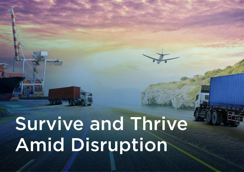 Survive & Thrive Amid Disruption