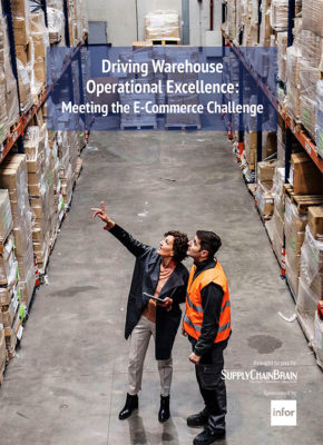 Driving Warehouse Operational Excellence: Meeting the E-Commerce Challenge