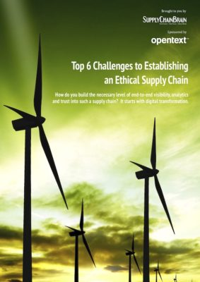 Top 6 Challenges to Establishing an Ethical Supply Chain