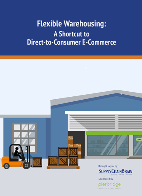 Flexible Warehousing: A Shortcut to Direct-to-Consumer E-Commerce