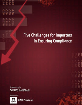 Qadprecision top 5 challenges for importers
